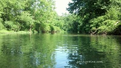 creekweb