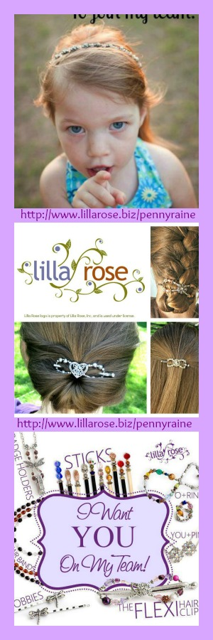 become a Lilla Rose independant consultant