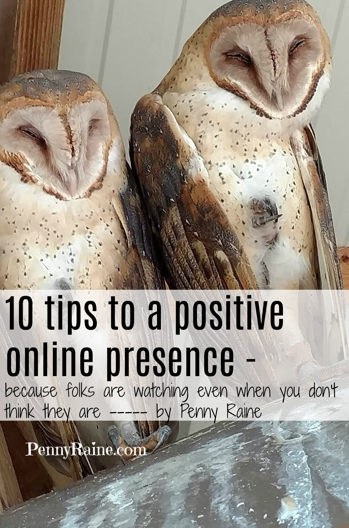10 tips to a positive online presence