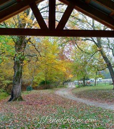 finally looks like fall colors